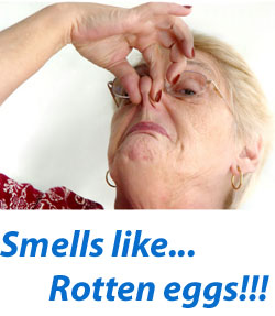 Rotten egg smell in house 28 images rotten egg smell for Why does my bathroom sink drain smell like rotten eggs